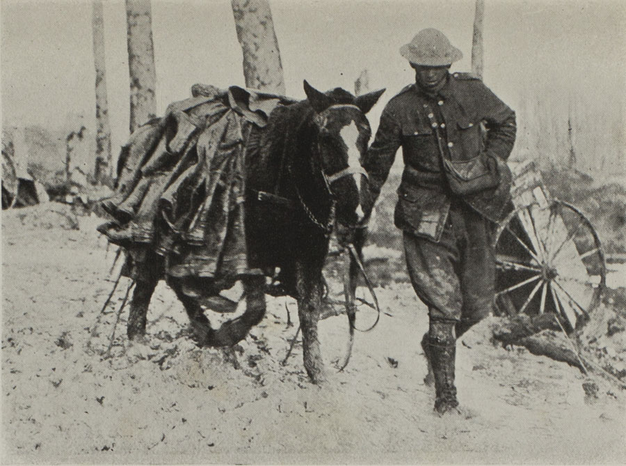 Soldier and horse struggle through the mud