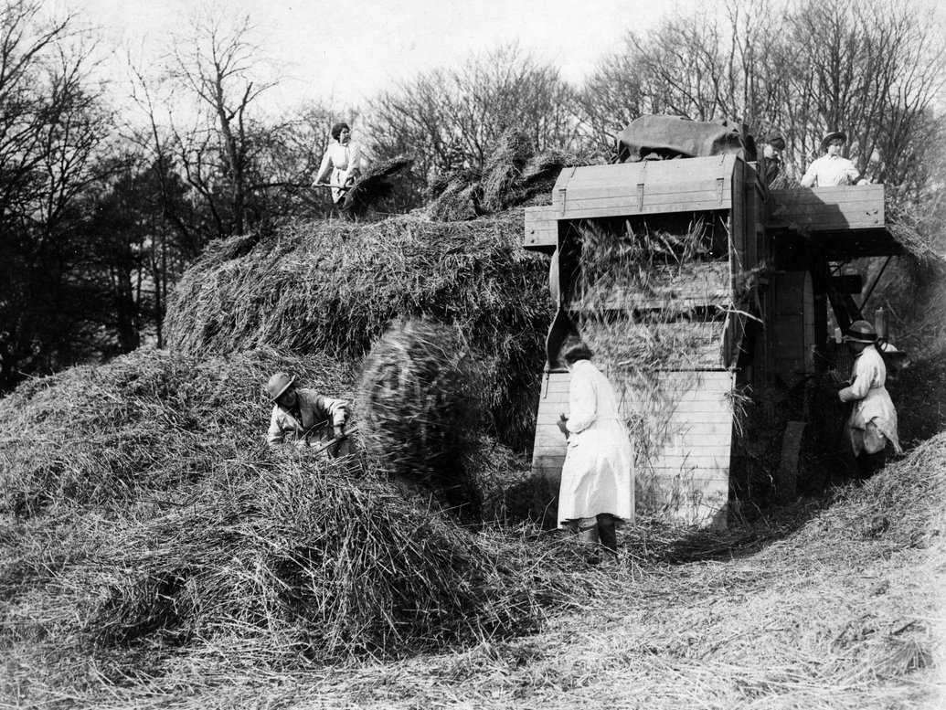 Black and white archive photograph of a group of women working outdoors to move hay.