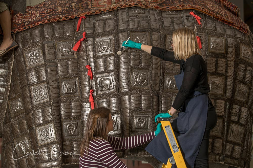 Two conservators using a soft brush to clean dust from the embossed panels on an armour for an elephant