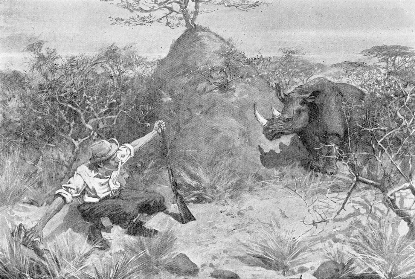 Grogan gropes for his rifle in the undergrowth whilst facing a rhino