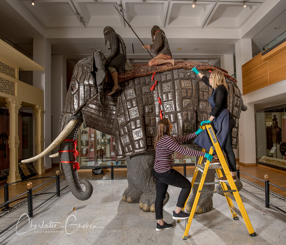 Elephant armour mounted on a model elephant in the oriental gallery being cleaned by a conservator on a yellow ladder being held by an assistant